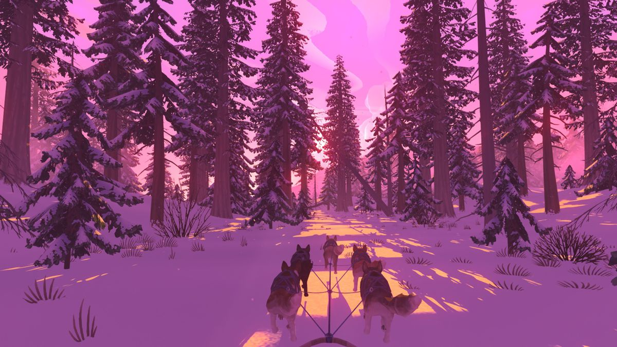 Dogs drag a sled through the snow with trees all around in an in-game screenshot