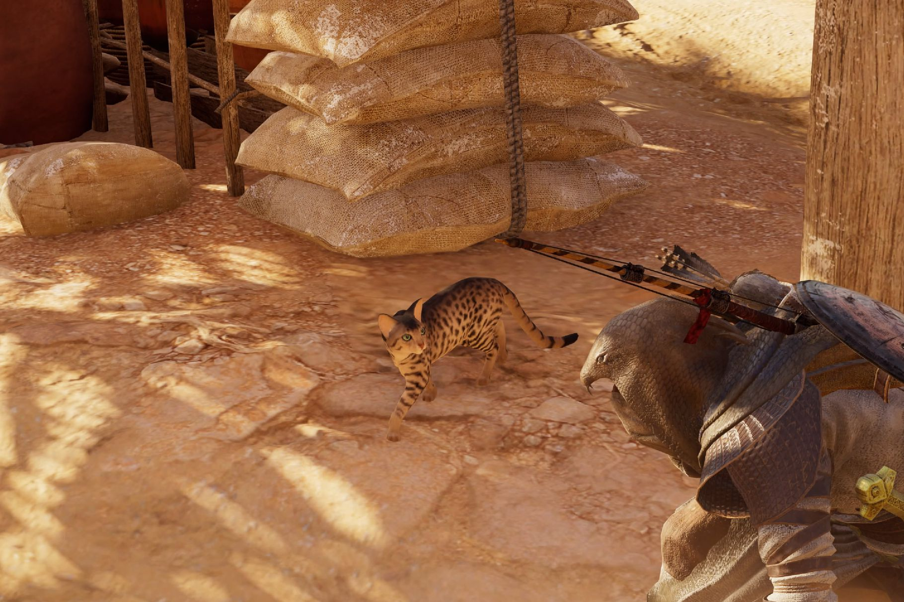Assassin's Creed Origins Video Game Lets You Pet a Cat