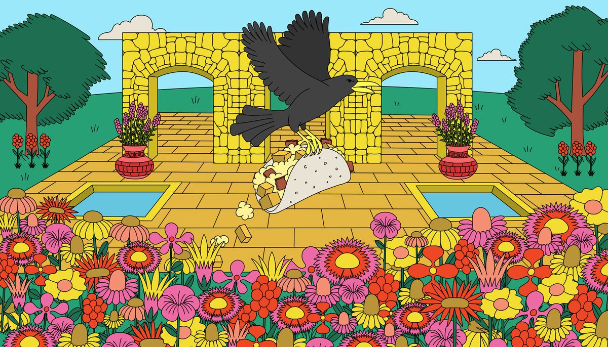 Illustration of a grackle carrying a breakfast taco. It's flying over a bunch of wildflowers and a pavilion with two square water pools in it. A sonte wall with arches is in the background. It's surrounded by grass and flanked by a tree on each side.