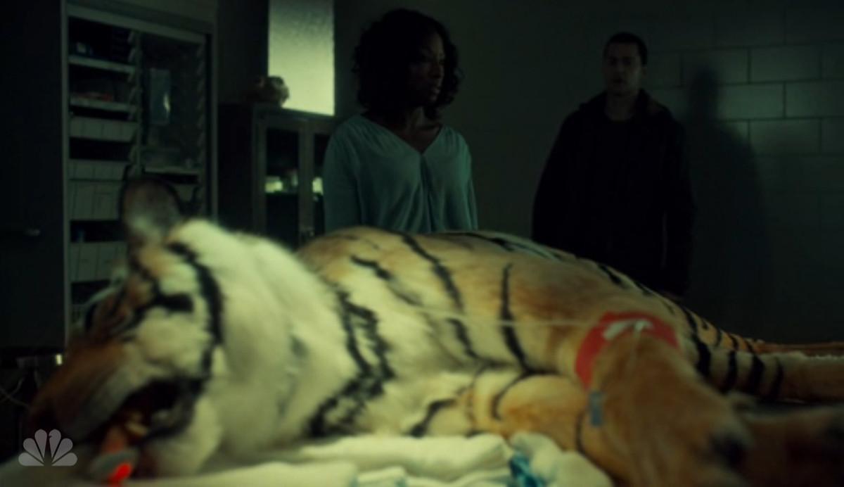 Reba and Francis visit a tiger on Hannibal.