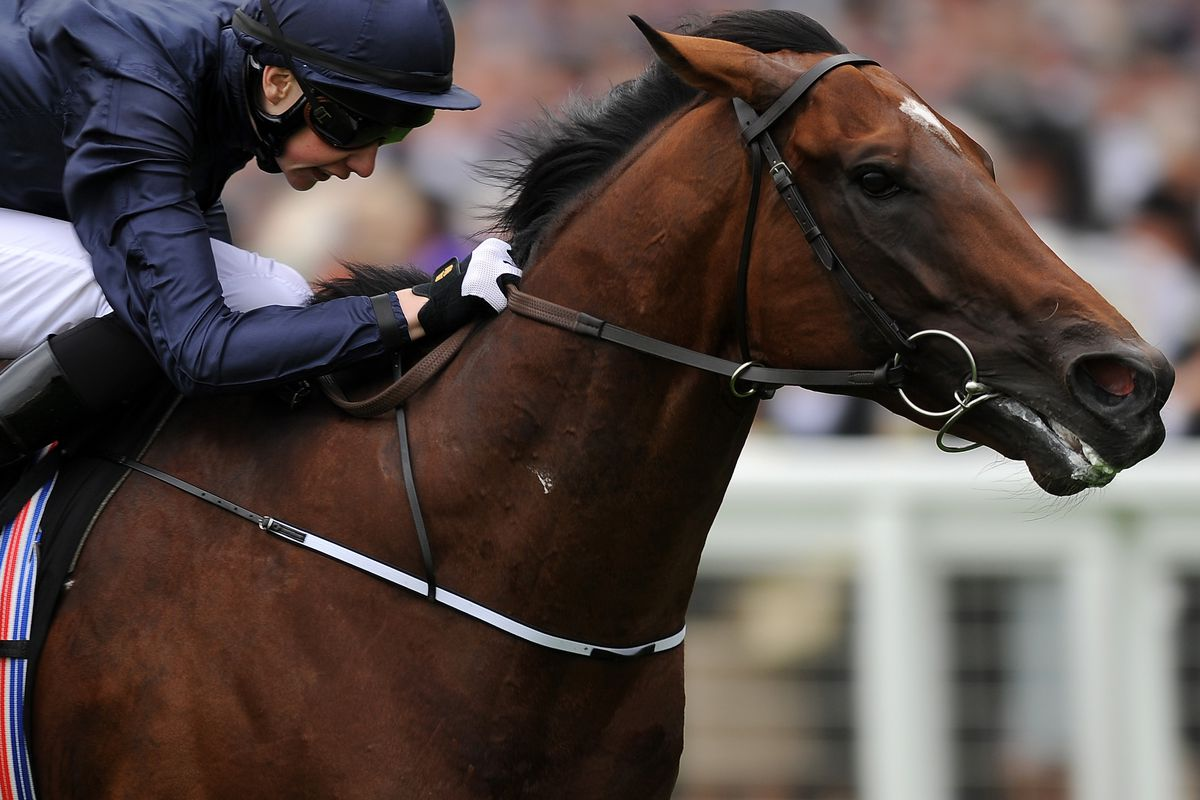 Declaration of War and Joseph O'Brien winning the Queen Anne Stakes at Royal Ascot.
