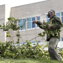 Mohammed Giravi, a Salt Lake City School District bus driver, cleans up debris from trees at East High School in Salt Lake City on Wednesday, Sept. 9, 2020. A windstorm that ripped through the Wasatch Front on Tuesday toppled trees and damaged homes.