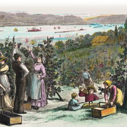 The Hudson Valley, wine mecca, circa 19th Century. [Source: Hudson Valley Wine Magazine]