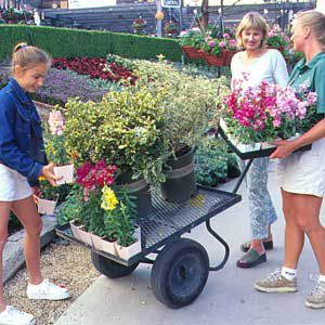 <p>These shoppers in a Southern California nursery benefit from the expert advice of a trained staff member (right). A display garden in the background shows what plants look like at maturity, which takes some of the guesswork out of choosing plants.</p>