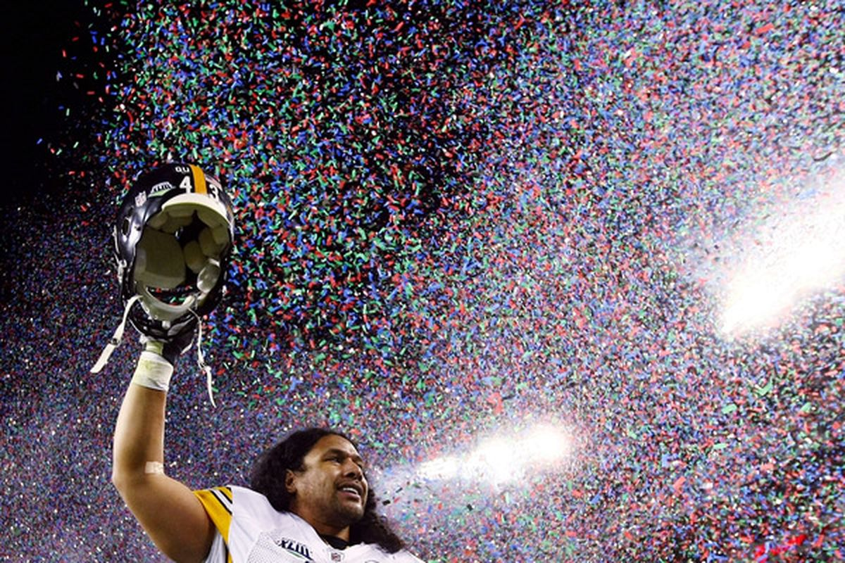 Bring out the confetti; Troy Polamalu is your defensive player of the year!