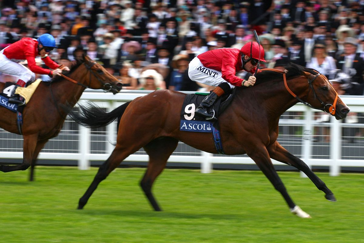 ASCOT, ENGLAND - JUNE 16: Richard Hughes and Paco Boy land The Queen Anne Stakes Race at Ascot Racecourse on the 1st Day of The Royal Meeting at Ascot Racecourse on June 16, 2009 in Ascot, England. (Photo by Julian Herbert/Getty Images)