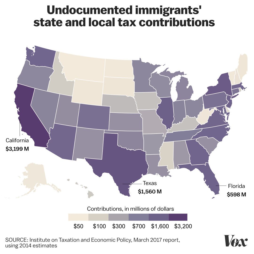 Illegal immigration taxes: Unauthorized immigrants pay state