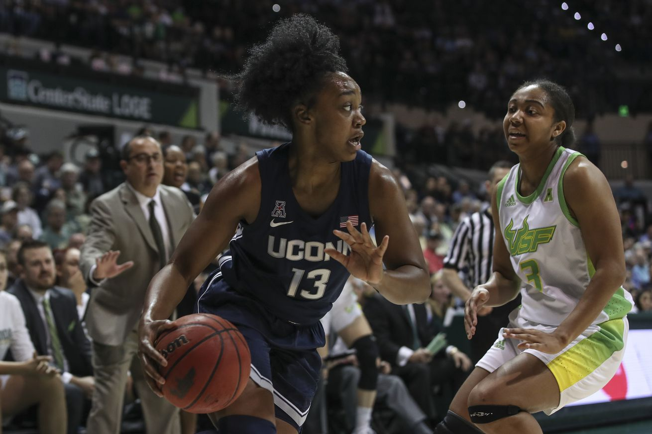 COLLEGE BASKETBALL: FEB 16 Women's UConn at USF