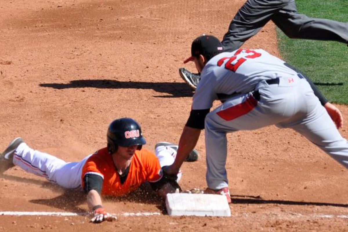 Oregon State slides back into action today in Surprise against Kansas State