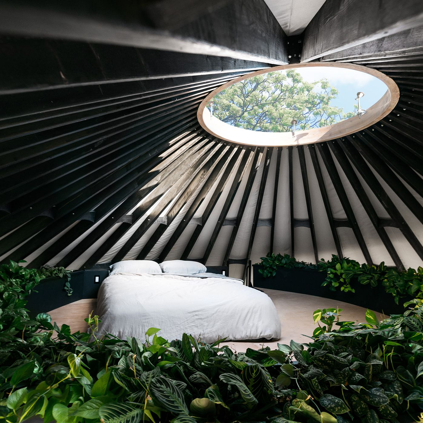 Modern Yurt With A Circular Loft Is A Plant Filled Oasis Curbed Our options are limitless and can fit whatever style or budget our yurts are professionally sewn and assembled before being packaged in the perfect container that's. modern yurt with a circular loft is a