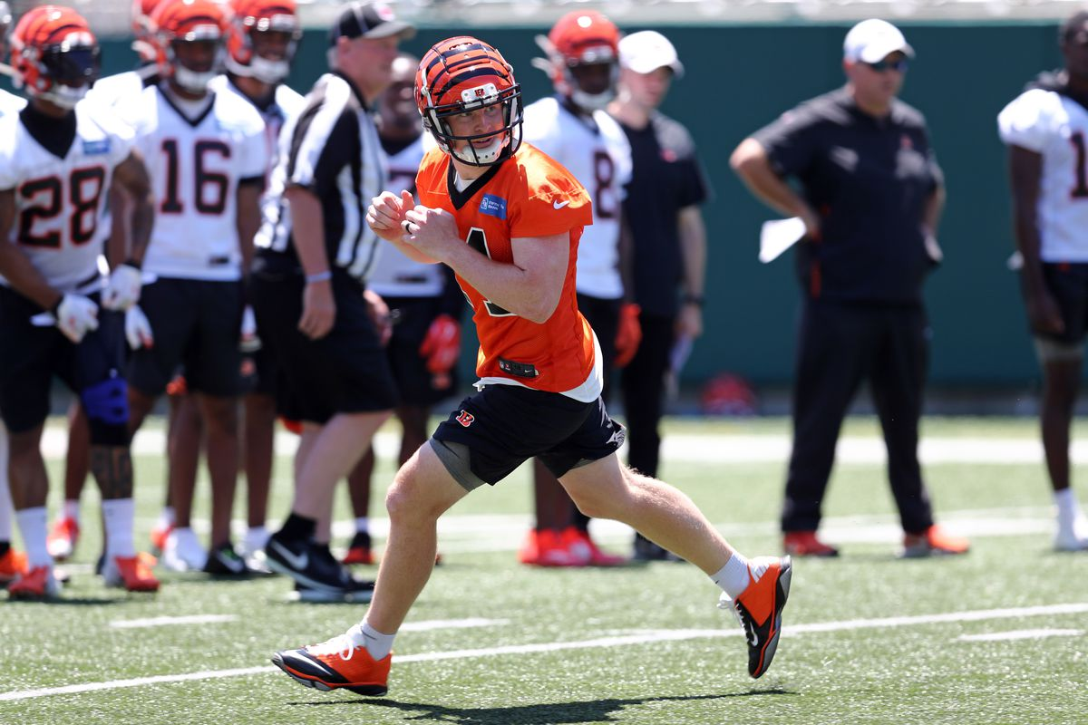 274a6752 Bengals news (7/20): Panic switch - Cincy Jungle