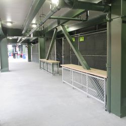 6:33 p.m. Another view of the patio walkway, below the right-field porch -