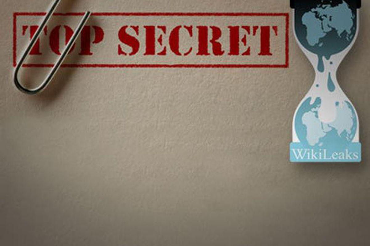 wikileaks press