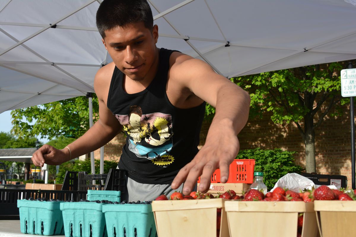 The Glencoe Farmers Market   File photo by Karie Angell Luc for Sun-Times