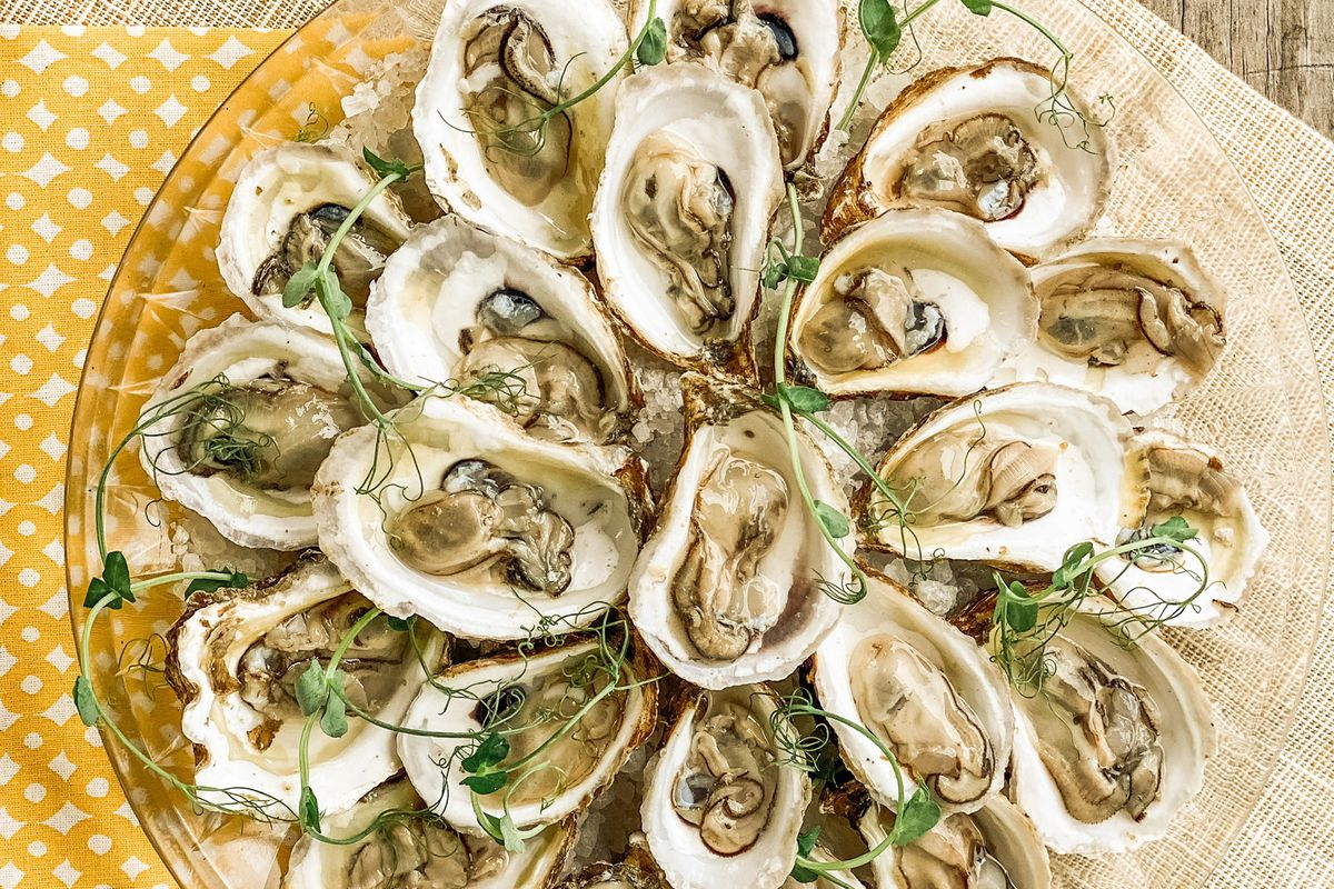 An overhead view of a plate of raw oysters garnished with shaved spring onions.