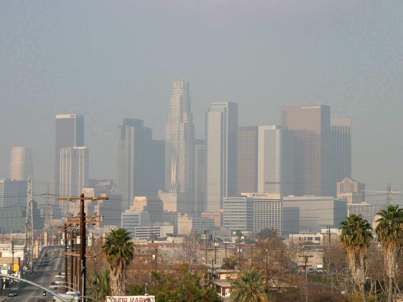 The Los Angeles metro area had a higher average ozone level than any other city in the nation.