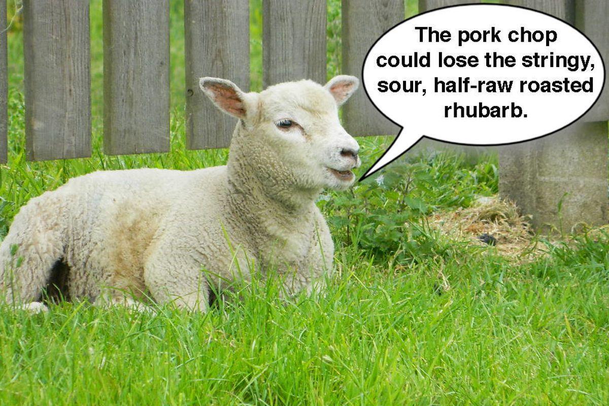"<span class=""credit"">[<a href=""http://home-keepinghearts.blogspot.com/2012/06/cute-sheep.html"">Photo Credit</a>]</span>"