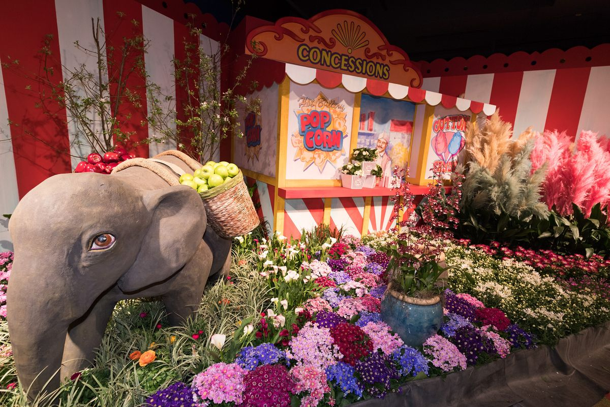 It's time for the annual Macy's Flower Show (pictured in 2017), taking place for the next two weeks at the State Street store.   Daniel Boczarski for Macy's
