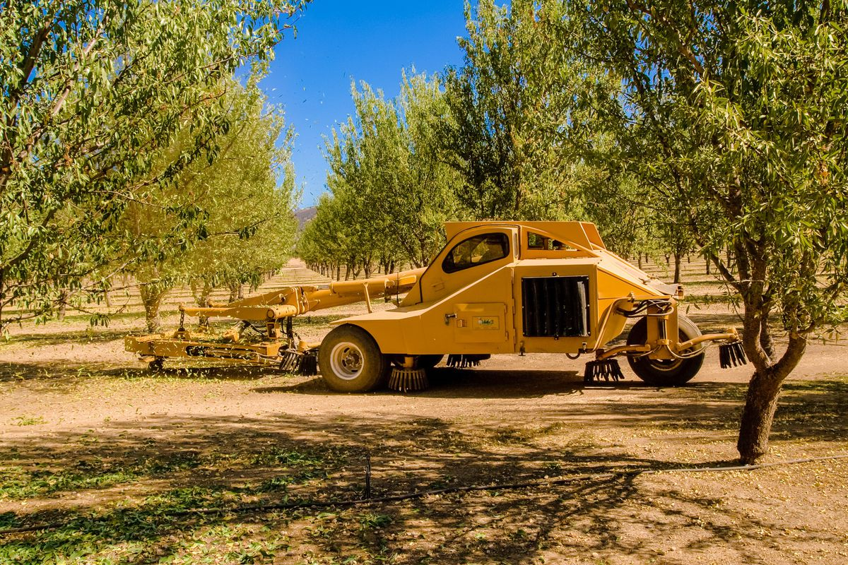 Three-wheel Nut Harvester or 'tree shaker' used in the harvesting of such nuts as almonds, walnuts, pistachios, etc. This Nut Harvester is harvesting almonds in an almond grove near Brooks, California. (Mardis Coers/Moment Mobile/Getty Images)