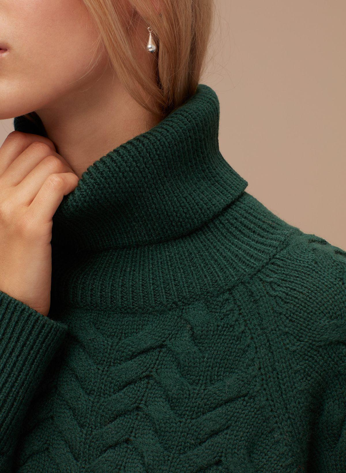 An Aritzia green turtleneck sweater