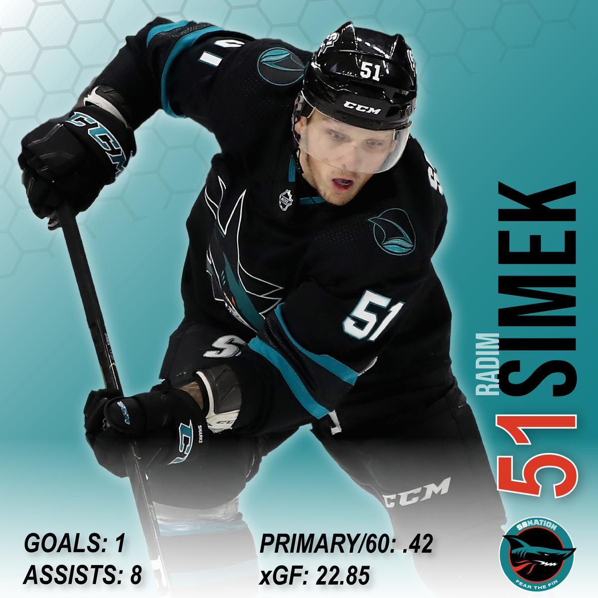 Radim Simek player card