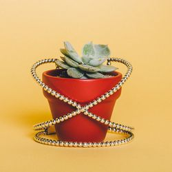 """Lady Grey 'Nexus' cuff, $275 (email info@ladygreyjewelry.com for info); The Sill mini plant in terra cotta planter, <a href=""""http://www.thesill.com/collections/mini-plants/products/fall-collection-set-of-six"""">$78</a> for six"""