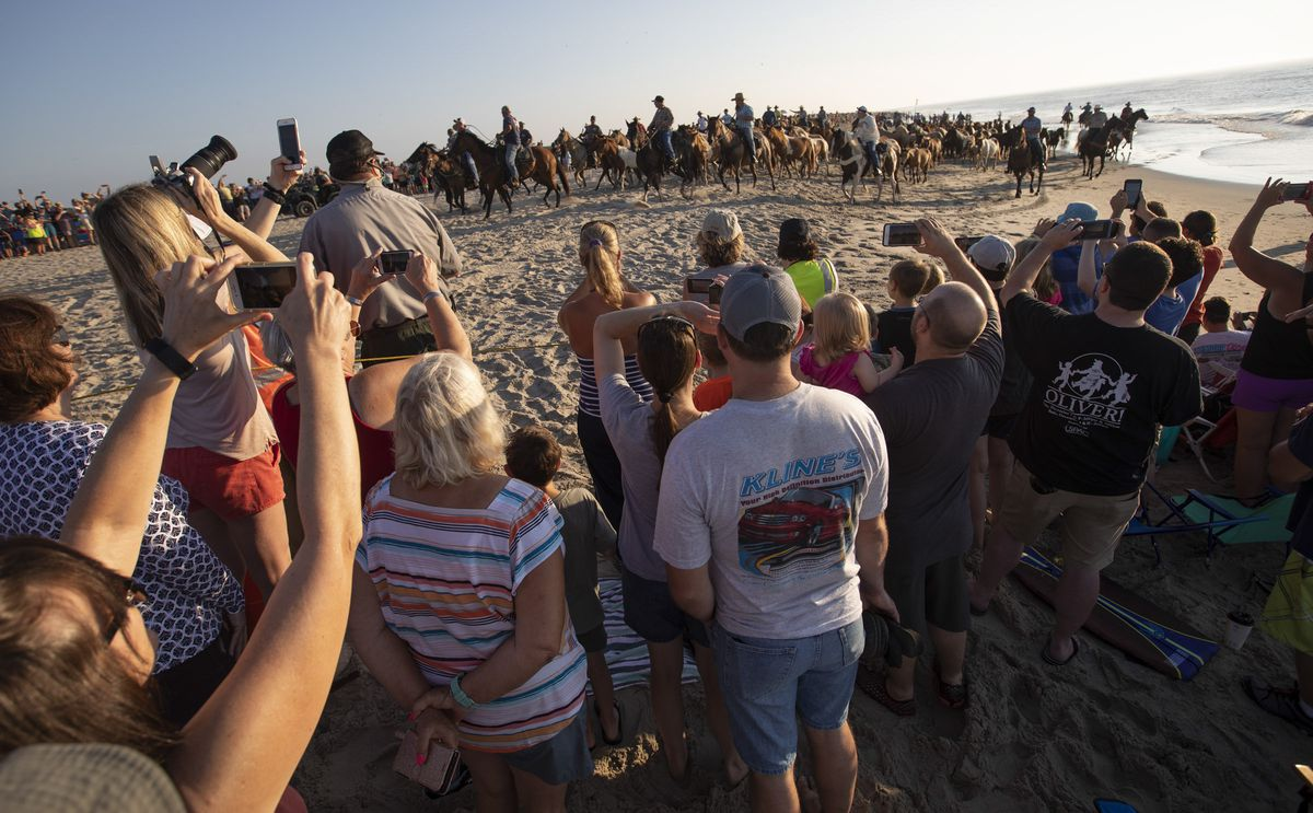 People watch volunteers with the Salt Water Cowboys walk wild ponies and foals from the northern herd along a beach on Assateague Island, Va., to pens where they will rest and be given a vet check before their swim to Chincoteague Island on Monday, July 22, 2019.