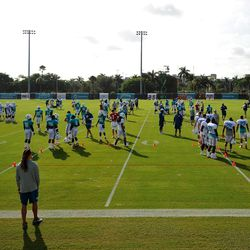 Jul 24, 2013; Davie, FL, USA; Miami Dolphins players take the field during training camp practice at the Doctors Hospital Training Facility at Nova Southeastern University.