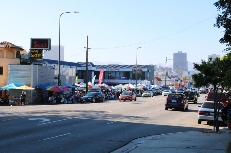 The whole of the Salvadoran street market in front of Koreatown's Two Guys Plaza.