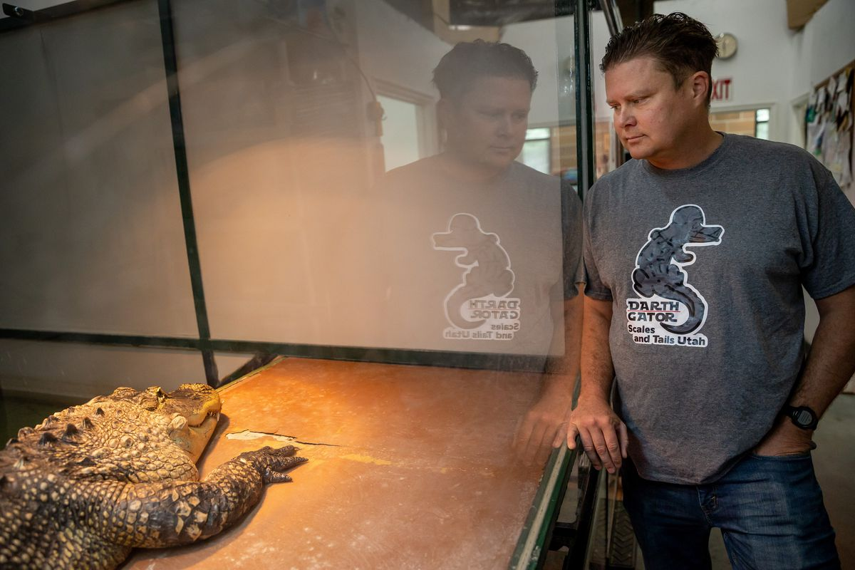 Shane Richins, owner of Scales and Tails Utah, poses for a photo beside Darth Gator, an 11-year-old 8.5-foot alligator, at the business in West Valley City on Thursday, Aug. 19, 2021.