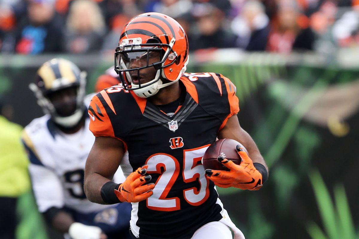 NFL: St. Louis Rams at Cincinnati Bengals