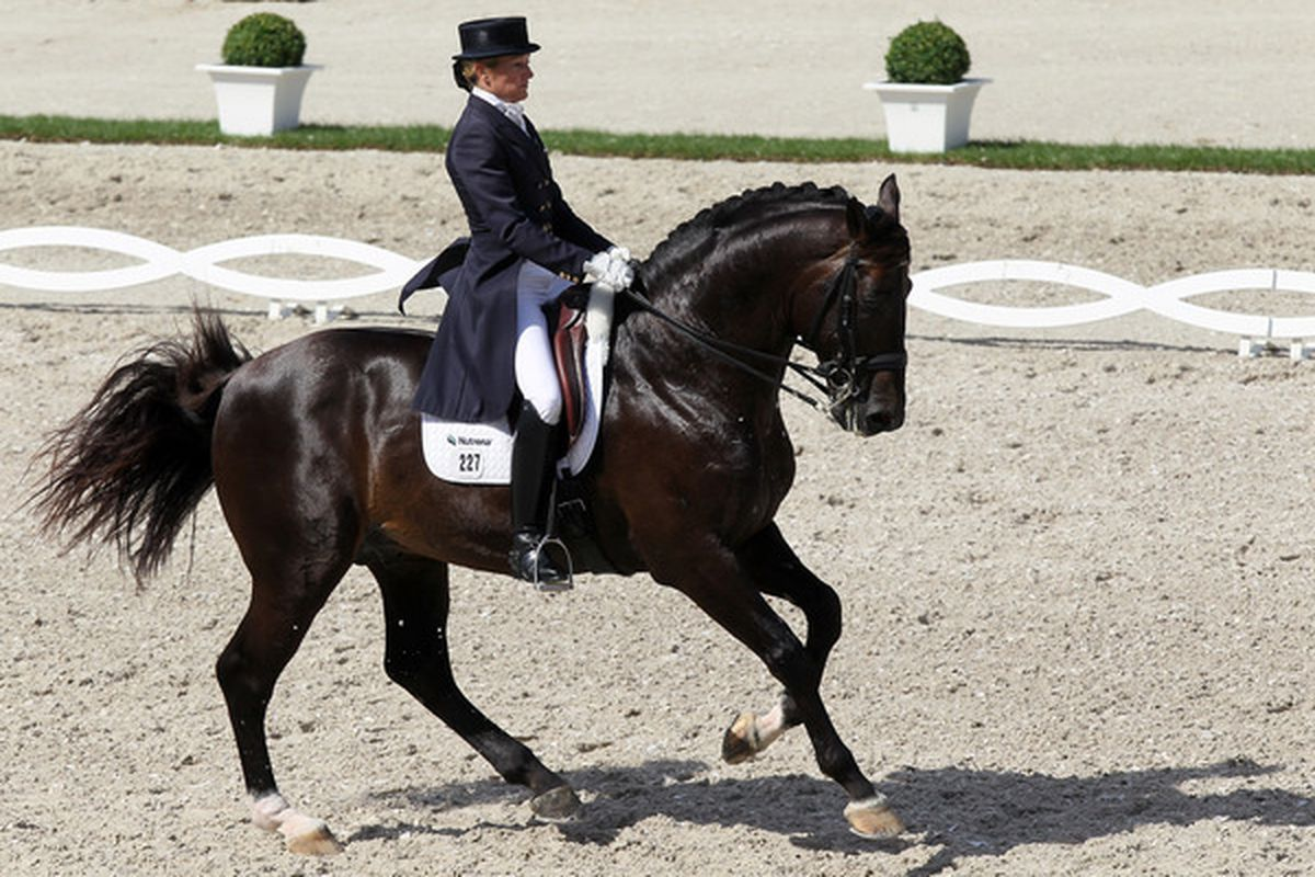 AACHEN GERMANY - JULY 15:  Tina Konyot of the United States rides on Calecto V during the Teschinkasso prize part of the Grand Prix CDIO dressage of the CHIO on July 15 2010 in Aachen Germany.  (Photo by Christof Koepsel/Bongarts/Getty Images)