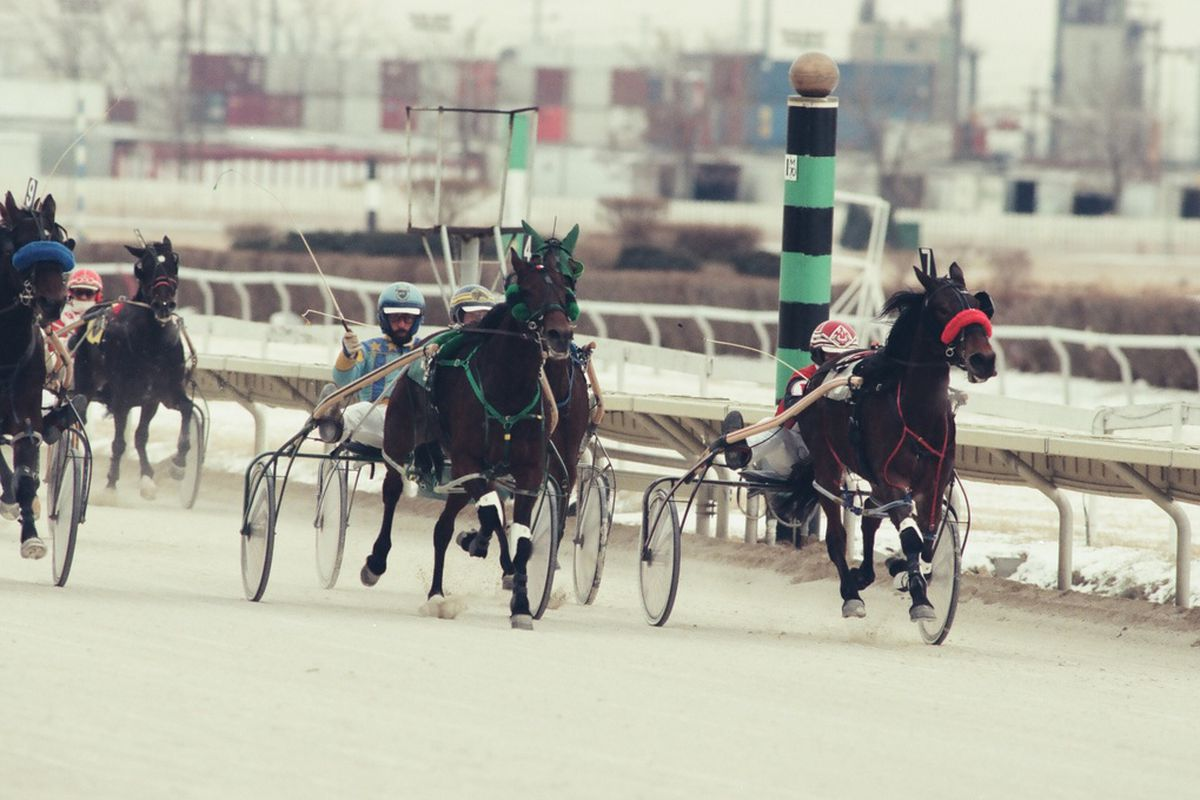 Harness racing at Hawthorne Race Course in 1996.