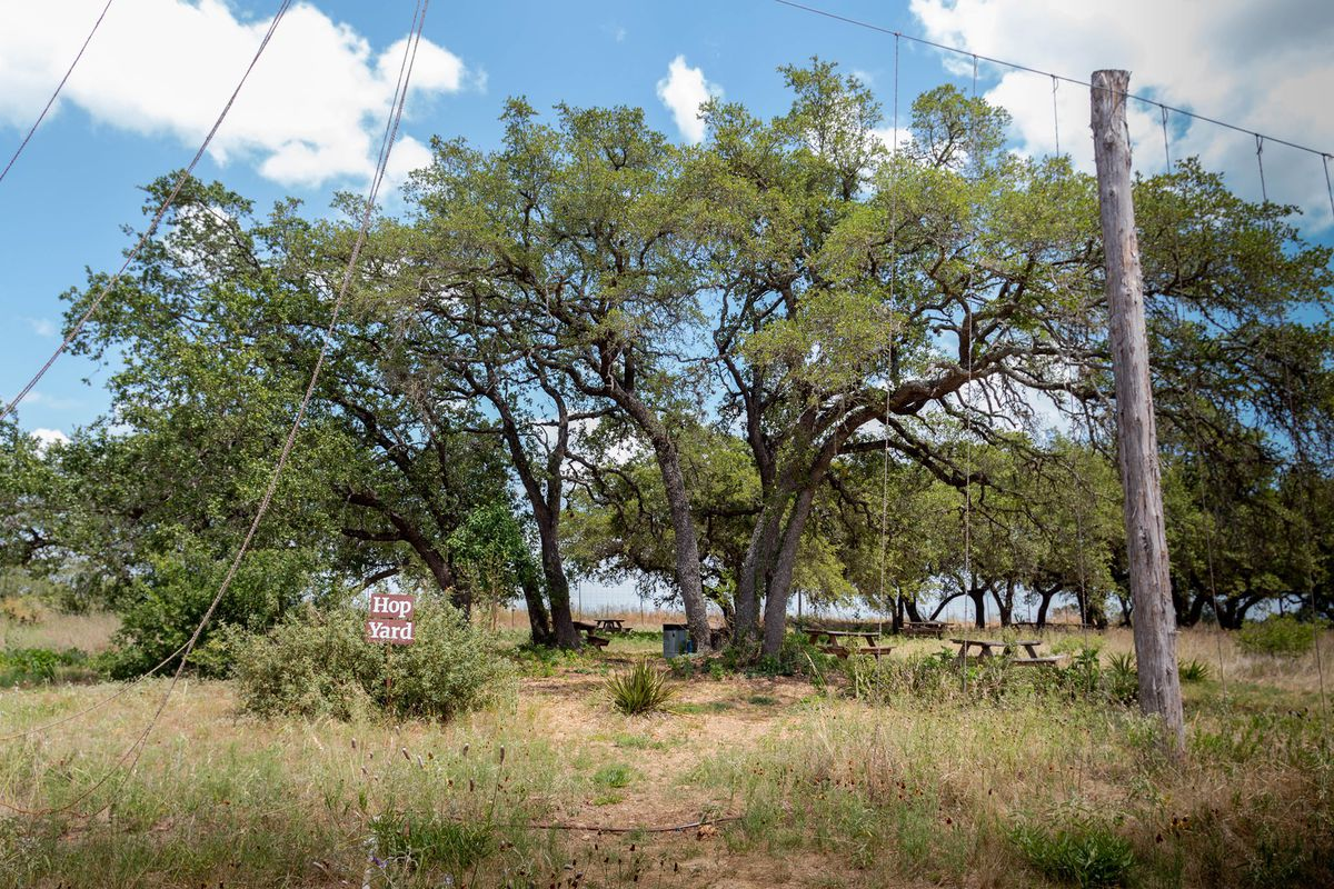 """A bunch of trees with wood picnic tables and grassy plants with a sign that says """"Hop Yard"""". In the forefront is a tall wooden pole that is holding up a horizontal string with vertical strings hanging from it"""