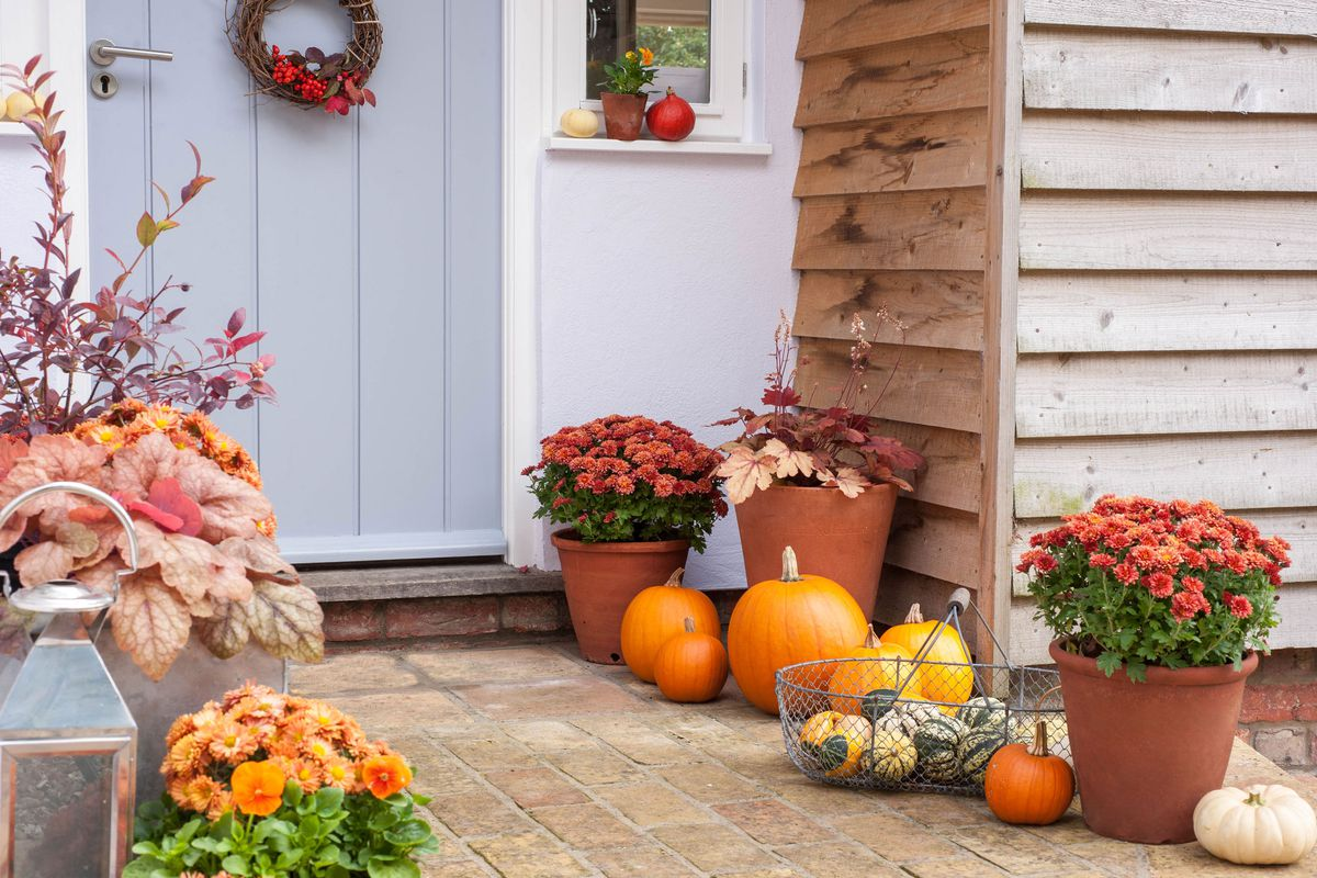 A front porch decked out in fall decor. Including pumpkins, Flowers and a wreath on a blue door.