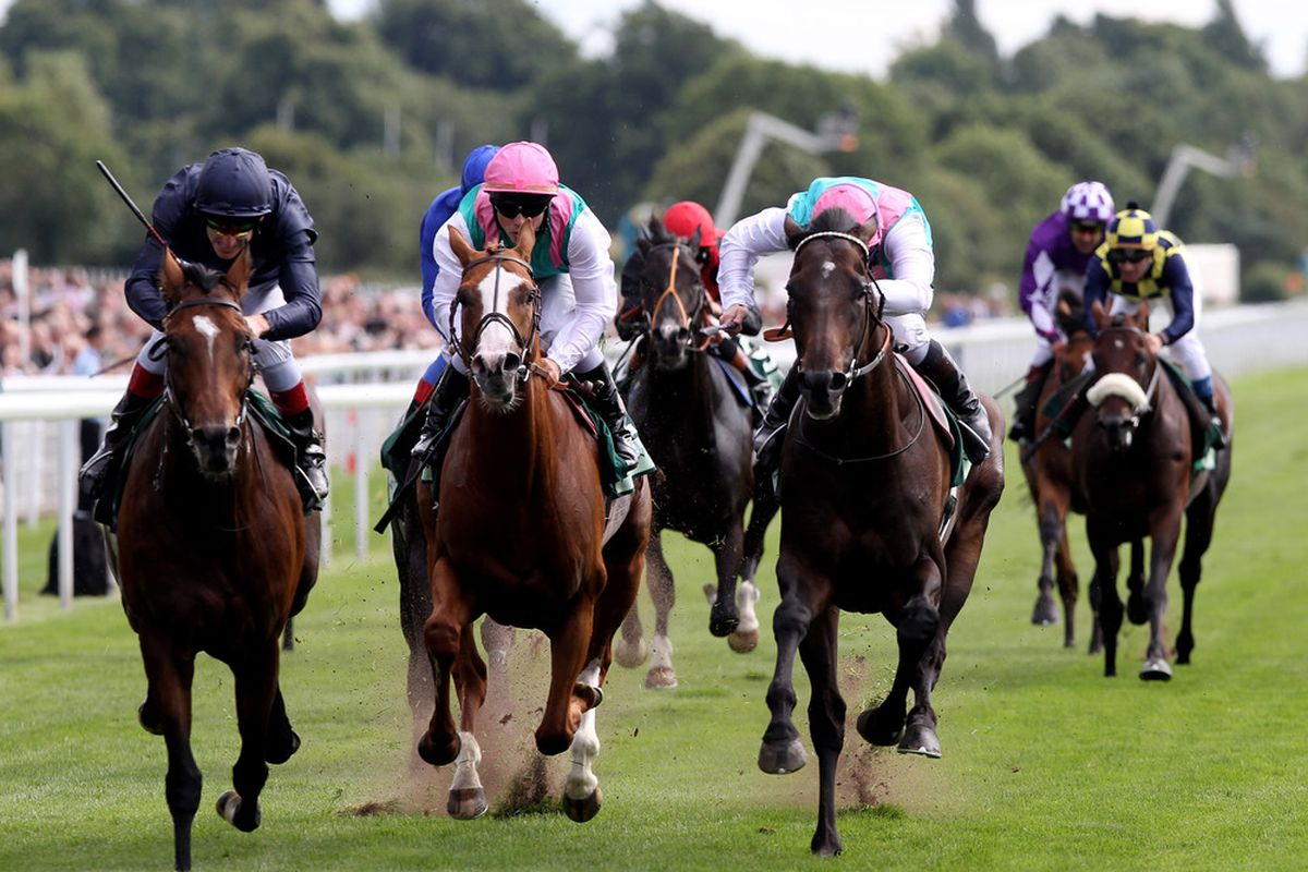 YORK, ENGLAND - AUGUST 17: Rip Van Winkle (left) ridden by Johnny Murtagh wins the Juddmonte International Stakes during the Yorkshire Ebor Festival at York Race Track on August 17, 2010 in York, England. (Photo by Ross Kinnaird/Getty Images)