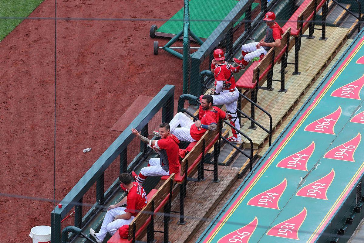 St Louis Cardinals Summer Workouts