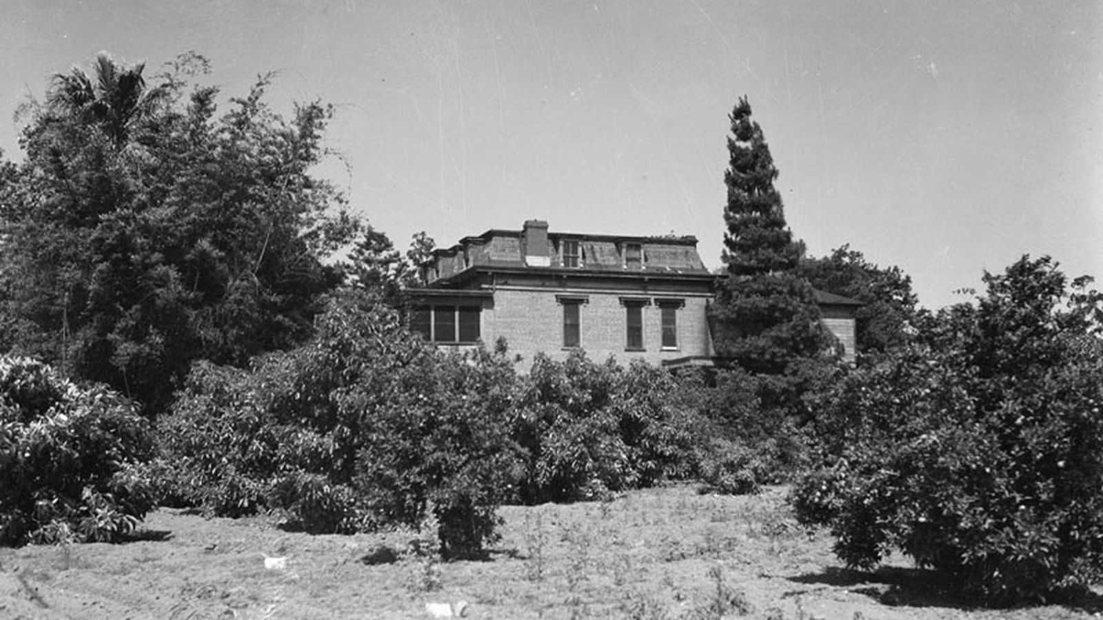 Phillips Mansion The Deserted Hub Of A Lost California