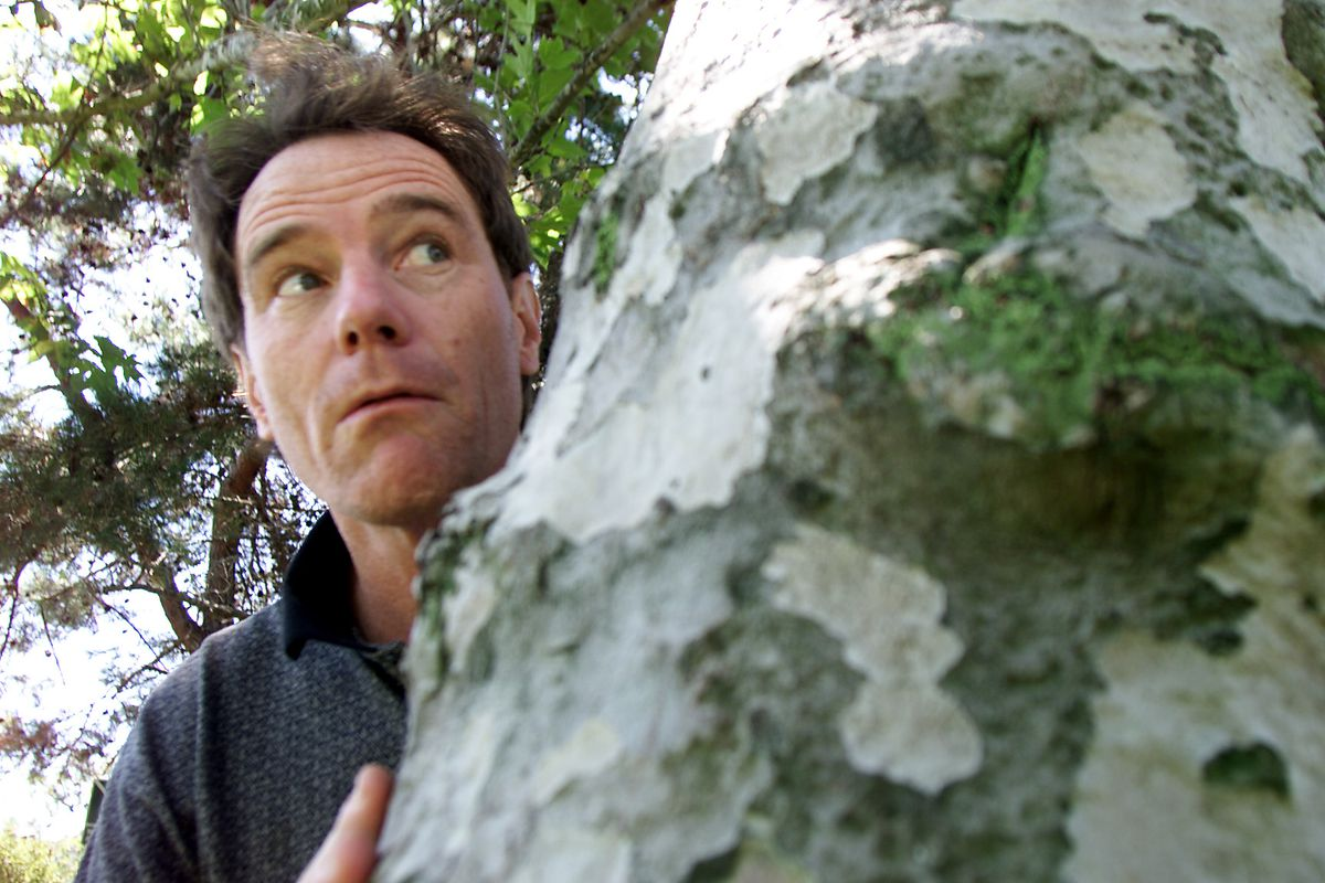 Bryan Cranston plays the father on Fox s acclaimed Malcolm in the Middle. While his co–stars Frankie