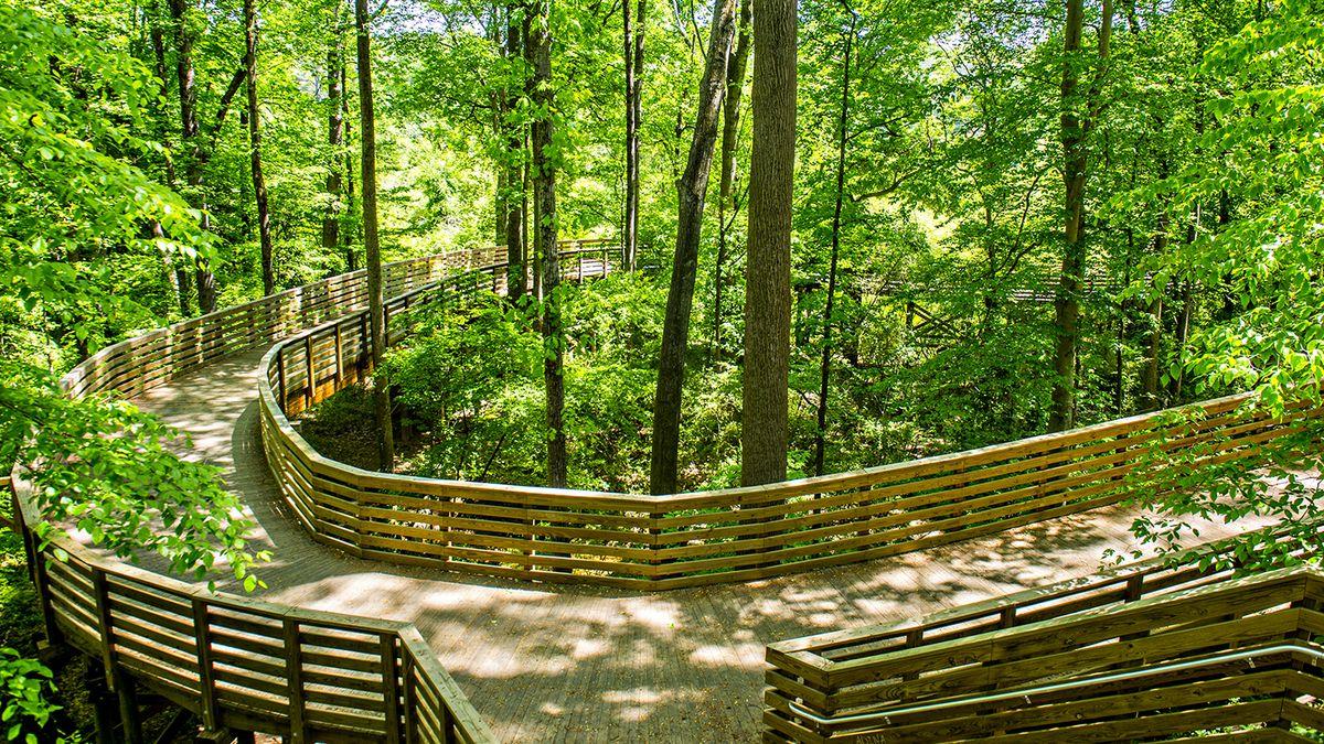 Photos Explore Wondrous South Peachtree Creek Trail A