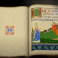 The picture book about Princess Fiona from Shrek (2001)
