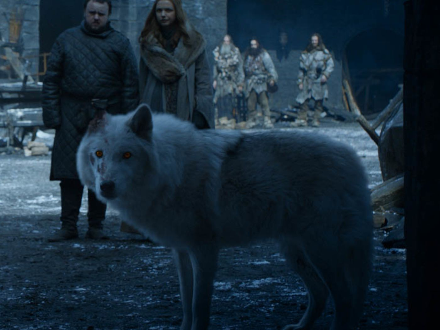 Game Of Thrones Fans Are Outraged About What Happened To Ghost Vox