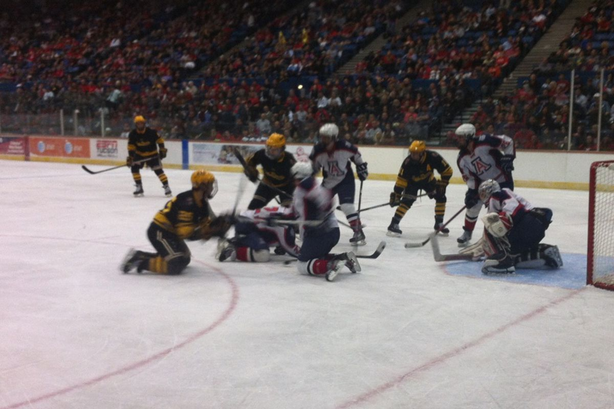 Arizona Hockey released the ticket prices for the 2013-14 season