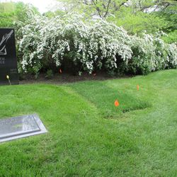 5/20/15: Another view -