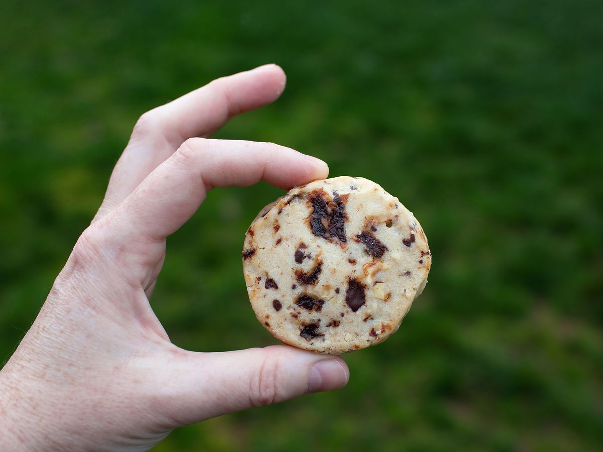 A hand holding a baseball-sized shortbread cookie dotted with cherry pieces and hazelnut