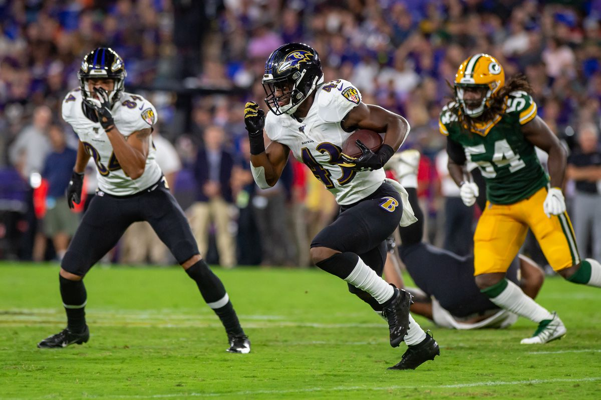 NFL: AUG 15 Preseason - Packers at Ravens