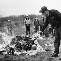Scoutmaster Richard McKallip feeds a community bonfire with comics after a house-to-house collection netted some 1,000 books on horror, crime and sex in a drive to destroy them at Winslow, Maine on Oct. 10, 1954. The books were collected in a 2 ½ hour house-to-house canvass by Boy Scouts as Police Chief Raymond Lachance toured the town in a cruiser appealing to parents to contribute any objectionable publications on hand.