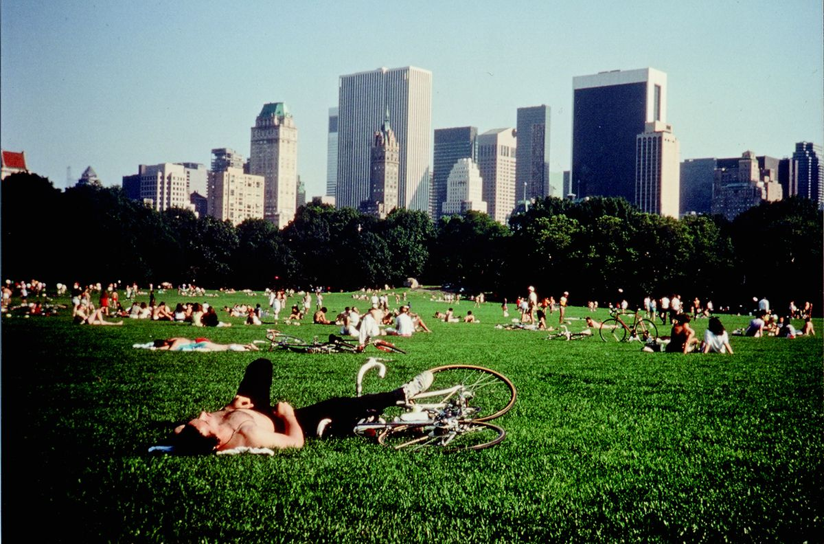 A scene from Central Park