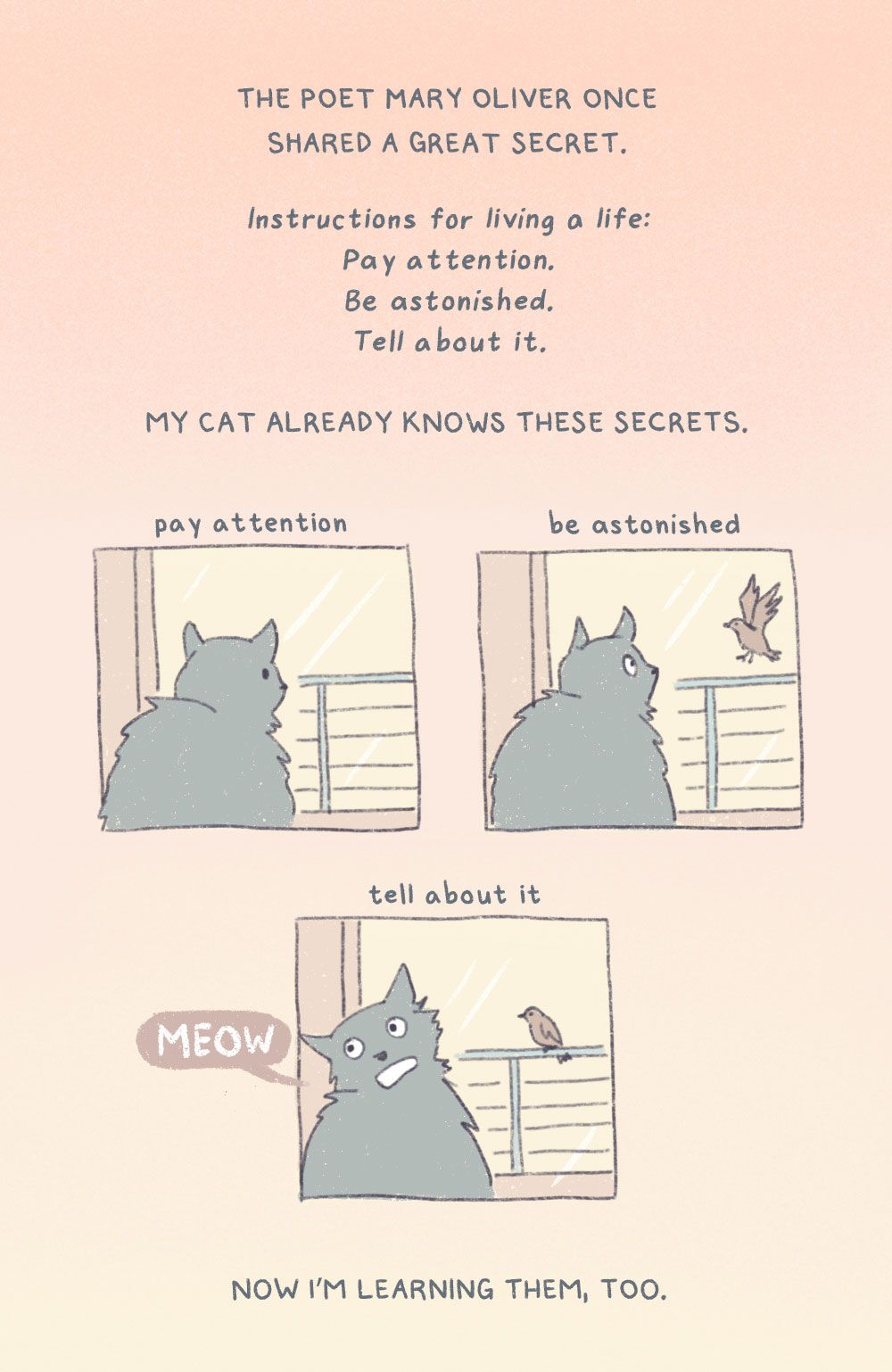 """The poet Mary Oliver once shared a great secret. """"Instructions for living a life:/ Pay attention./ Be astonished.' Tell about it."""" My cat already knows these secrets. Now I'm learning them, too."""