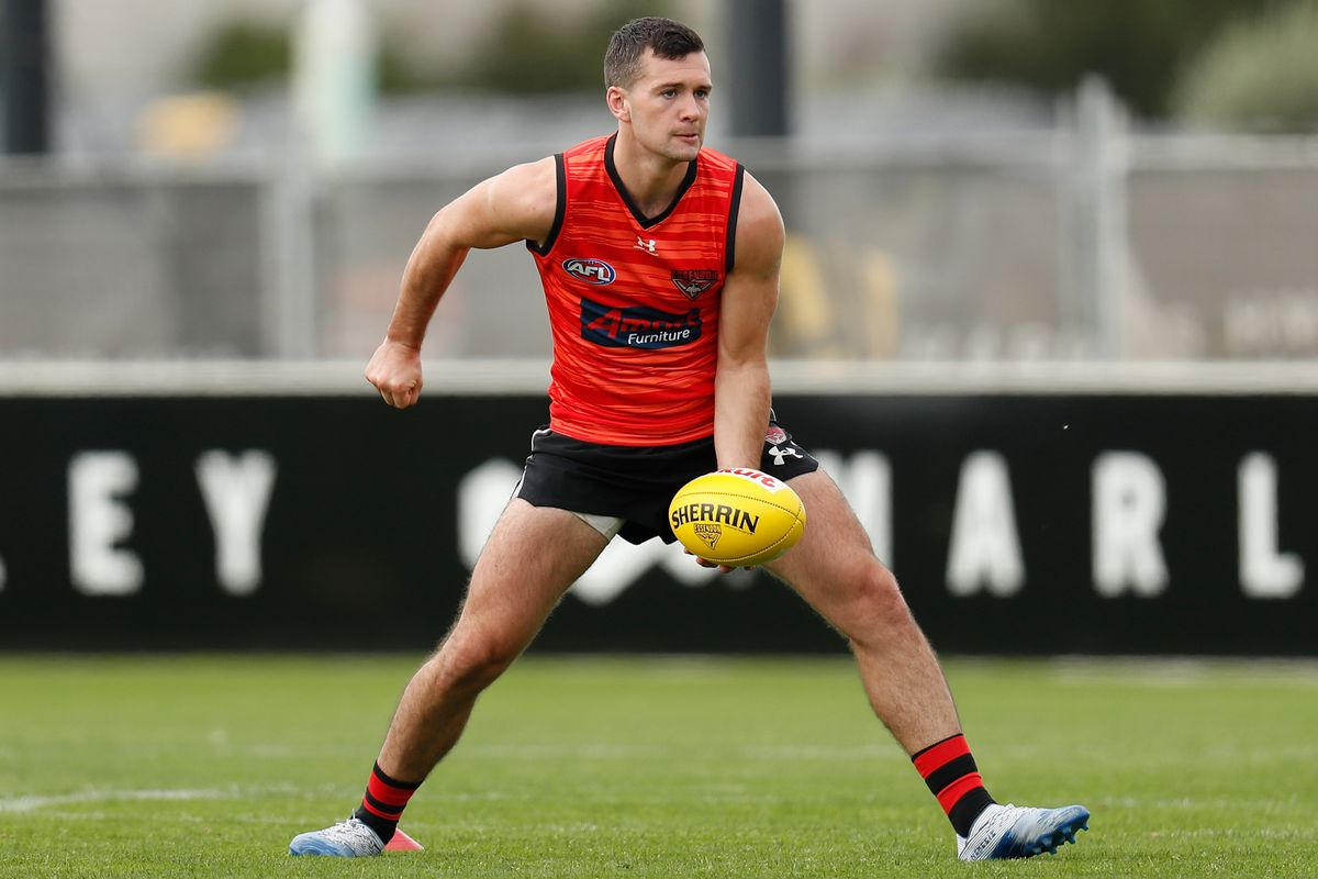 Essendon best and fairest betting on sports plus minus basketball betting system